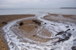 Lepe Country Park 106