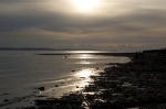 Lepe Country Park 13