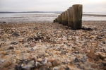 Lepe Country Park 74
